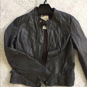 B.B. Dakota Dark Gray Leather Moto Jacket